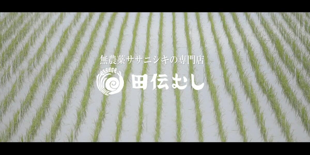 【New!】株式会社田伝むしのブランディング映像シリーズ第1話公開